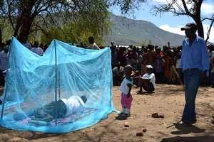 Mosquito net demonstration