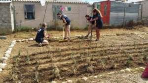 Hard at work preparing the garden