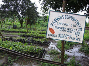 We visit cocoa research sites