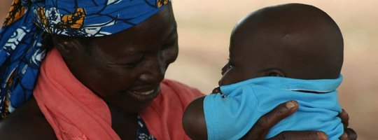 Help 375 Just Shea Women Harvest Safer, Earn More