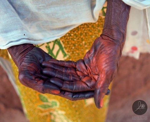 Harvesting Hands 2