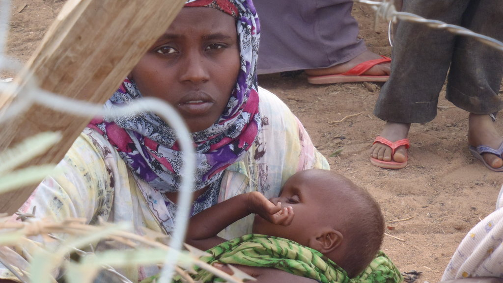 ShelterBox Relief: Horn of Africa & Global Crises