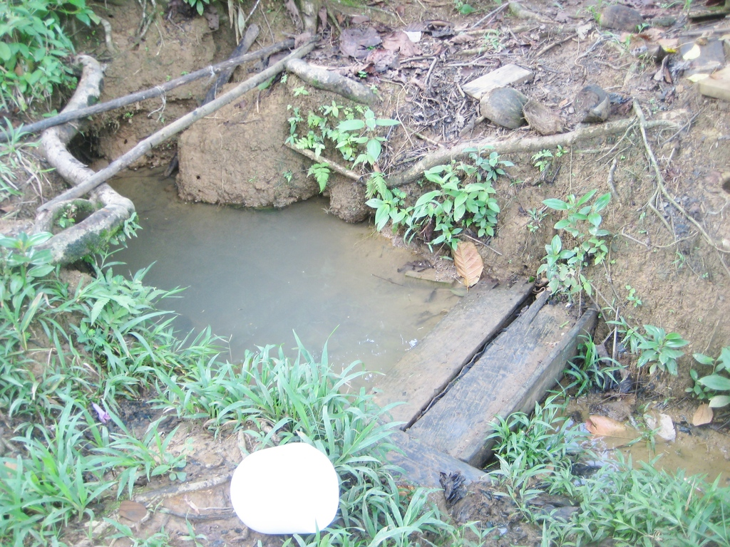 A polluted water hole  caused many kids to be sick