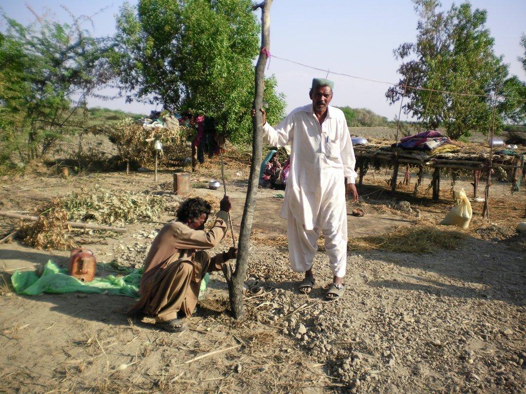 Constructing temporary shelter