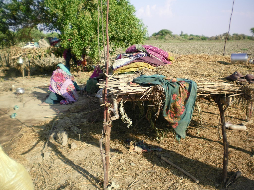 Flood victims migrated to Jati area