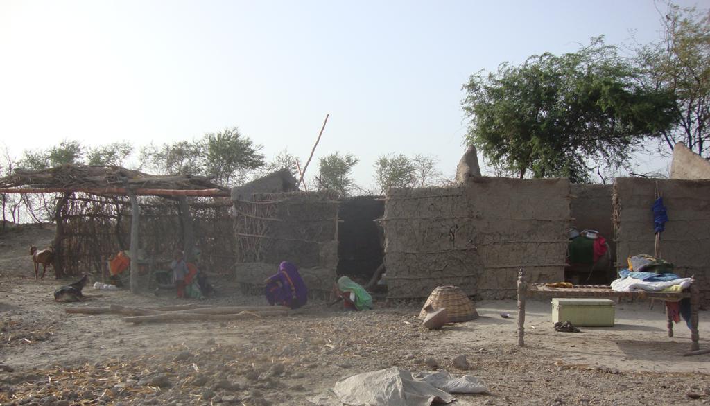 Village Saleh Somaro women preparing house