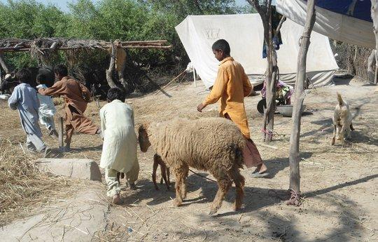Villagers using their broken houses near matli
