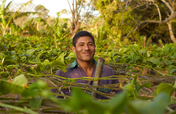 Support Sustainability for Nicaraguan Farmers