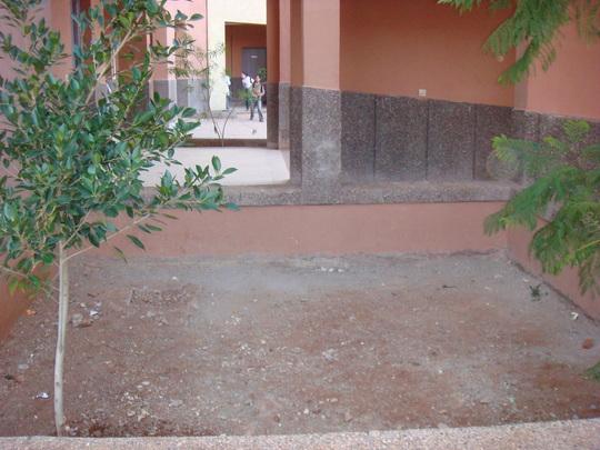 Tree planting site at Alkayrouane elementary