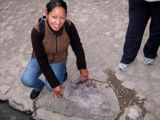 "Ruth demonstrates the ""blood rock"" Inca stone"