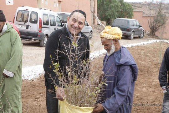 Multicultural Cooperation for Fruit Tree Planting