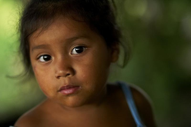 Support Sustainability for Honduran Farmers