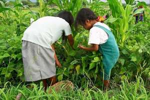 A child and her mother picking vegetables