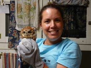 Volunteer with Eastern screech owl patient