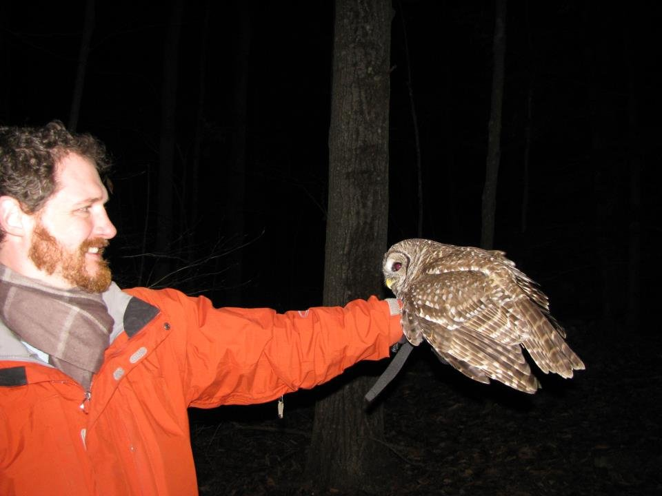 Rescuer releases barred owl back into the wild!