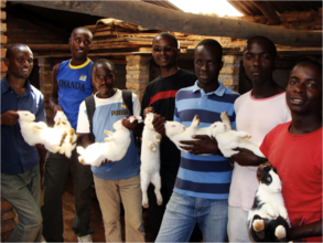 Rabbit project for Anti-HIV/AIDS youth club