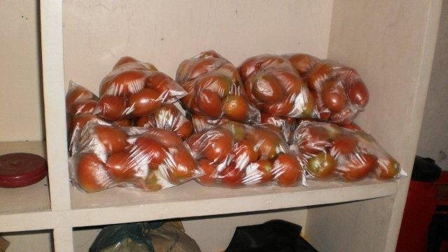 Tomatoes ready for sale