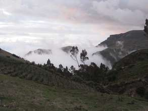 The High Andean Paramo of Guangaje