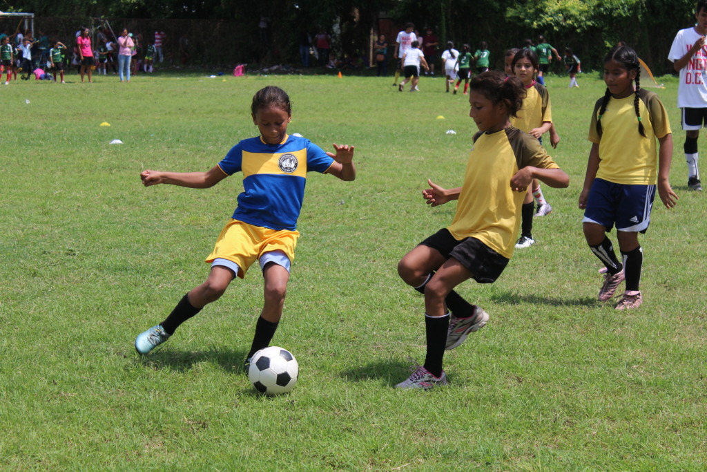 Junior division game-day action