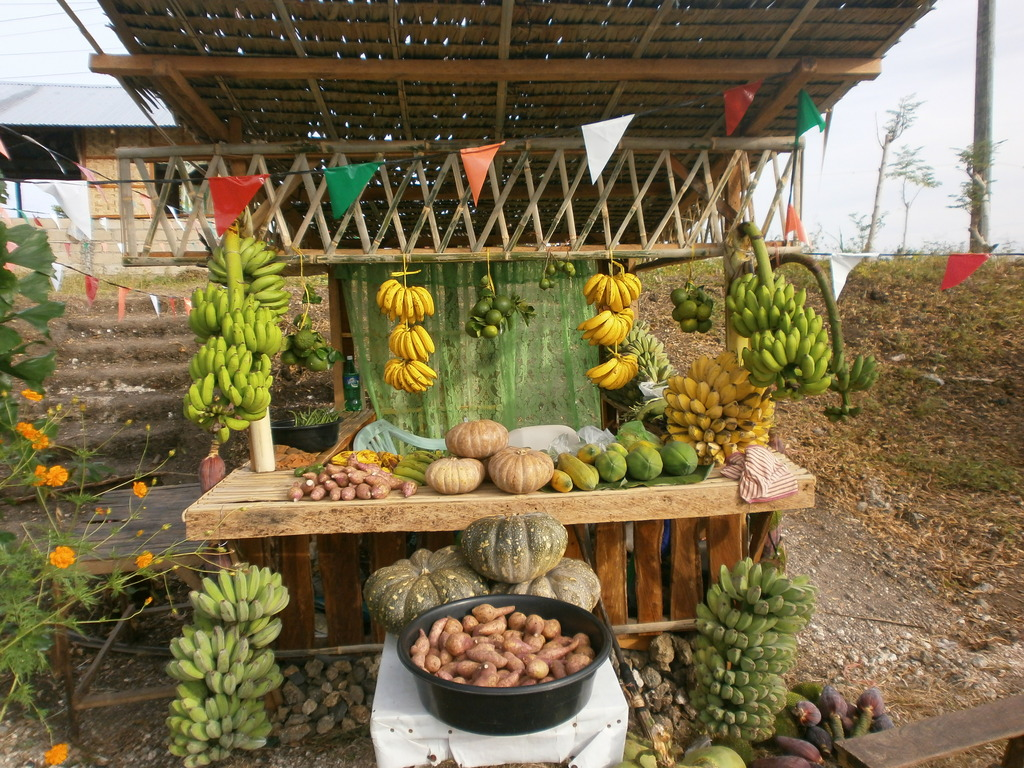 booths showcasing harvests of a cluster of farmers