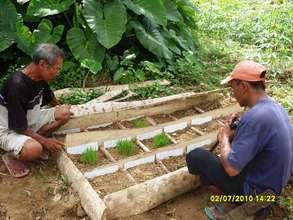 Organic rice seedbanking in Cagawasan, Bohol