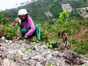 Woman farmer in Cebu province