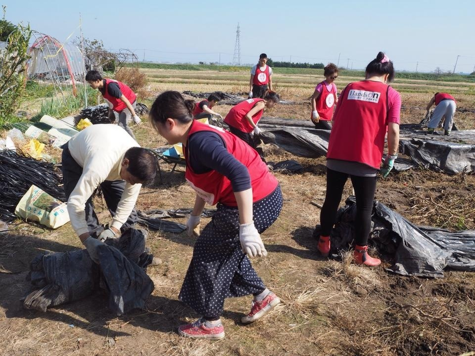 Helping out at the New Rice Center in Yamamoto-cho