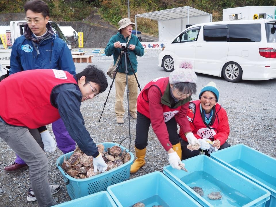 Helping at the Scallop Festival in Ogatsu