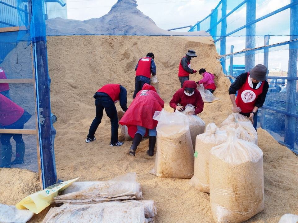 Bagging rice husk at the New Rice Center
