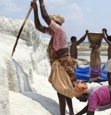 Enhance health of 900 SaltPan Women in South India