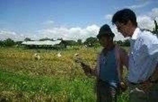 E-Commerce for Farmers Program