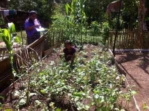 Mentor visits family garden