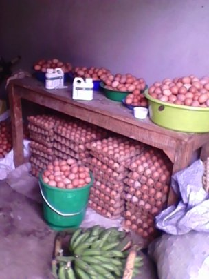 Eggs ready for sale