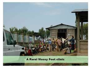 Mossy Foot Clinic