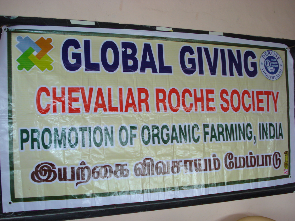 Global Giving Banner