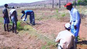 Soil sample survey
