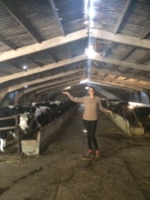 Assessing a Dairy Venture