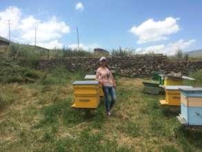 Beekeeper in Armenia