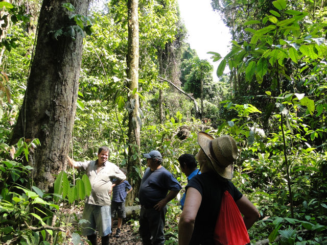 38 Hectares of Valuable Resources for the Maleku