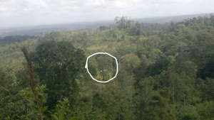 Marvin's property from above, the house is circled