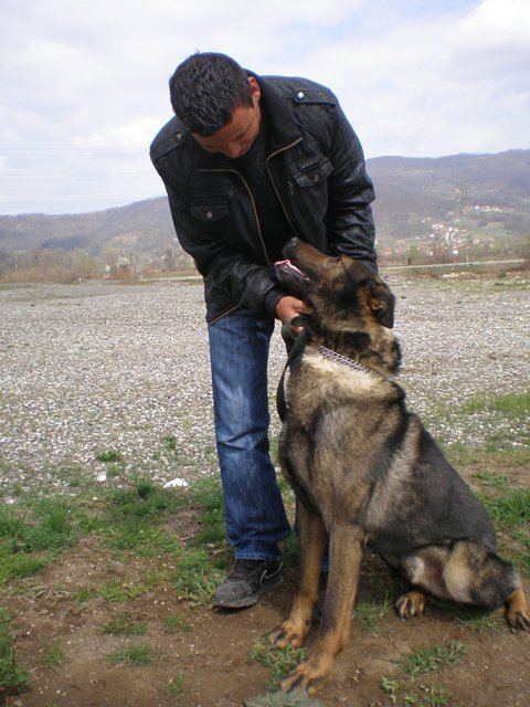 MDD Charlie with his handler.2