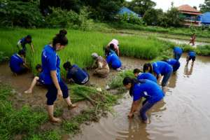Students Learning to Plant Rice