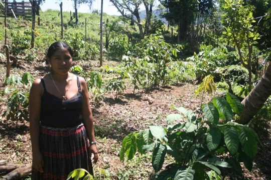 A local farmer shows her agroforestry plot.