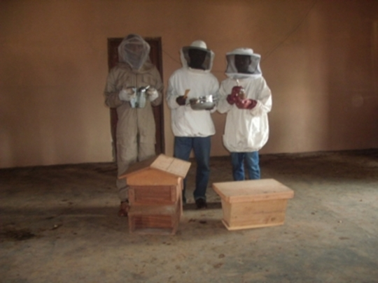 Workshop participants in honey harvesting outfit