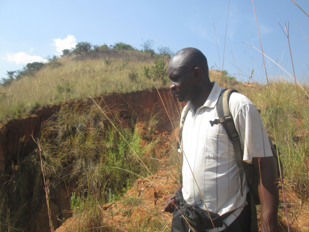 Embarrassed with effect of unchecked gully erosion