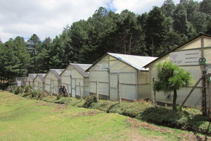 Greenhouses in Totonicapan