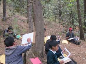 Youth drawing trees in sacred forest.