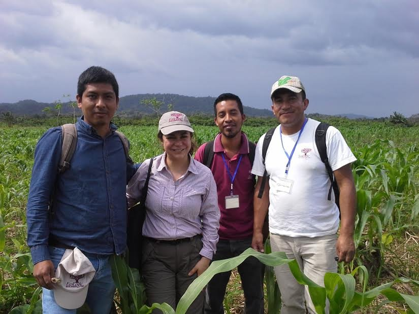 Antonio and Staff in agroforestry field, Guatemala
