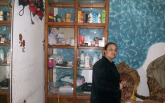 Micro-finance Project in Egypt-Empower 200 women