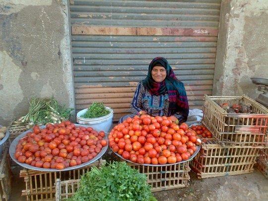 Financial Independence through B'edaya